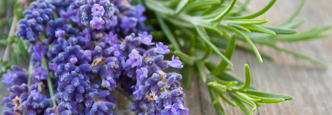 feature image lavender spray diy